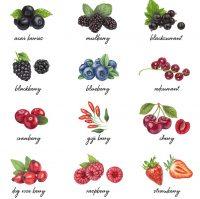 "alt=""Berries"""